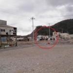 東日本大震災1年(その5)